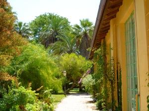 Orto Botanico, Rome