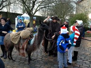 Random llamas at Boulogne Christmas market